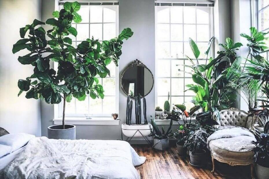 Decoración de interiores con estilo Jungle