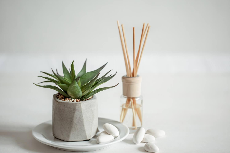 Varillas aromáticas para eliminar malos olores del hogar